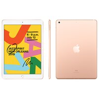 "iPad 10,2"" (2019) WiFi 128GB - Gold - iBite Nitra G1"